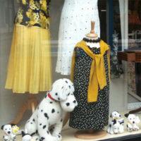 Dogs Trust, High Street Deal, Kent