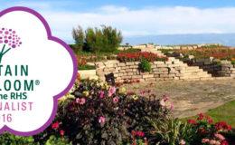 Sandown Castle Community Garden, Deal, Kent - Britain in Bloom 2016 finalistb